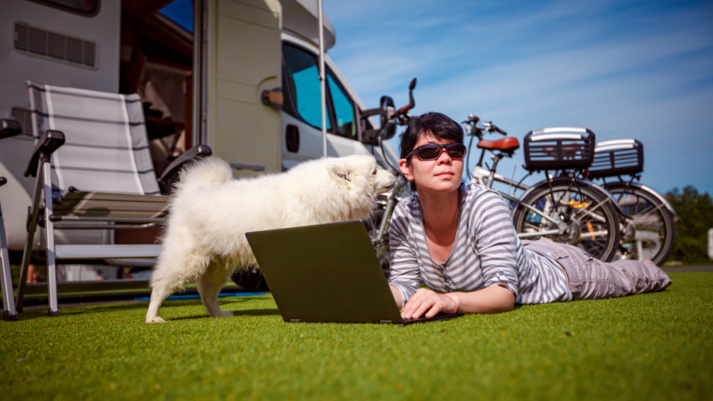 Essential Tips for Camping with Dogs